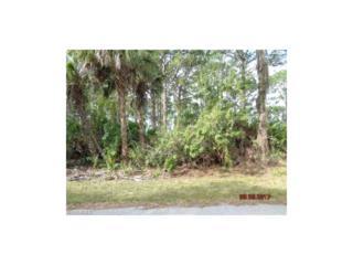 12509 Harlow Ave, Port Charlotte, FL 33953 (MLS #217023143) :: The New Home Spot, Inc.