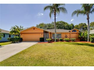 9906 Country Oaks Dr, Fort Myers, FL 33967 (MLS #217023164) :: The New Home Spot, Inc.