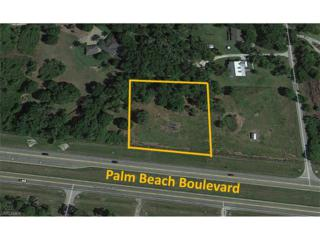 18001 Palm Beach Blvd, Alva, FL 33920 (MLS #217023268) :: The New Home Spot, Inc.