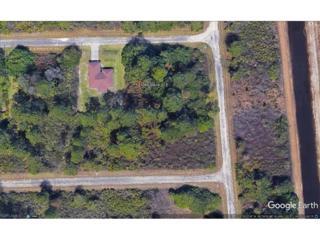 1066 Baird St E, Lehigh Acres, FL 33974 (#217026042) :: Homes and Land Brokers, Inc