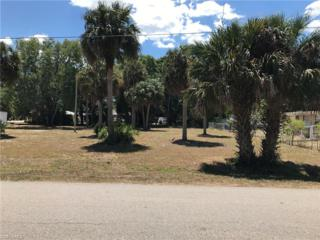 171 Rose St, North Fort Myers, FL 33903 (#217026287) :: Homes and Land Brokers, Inc