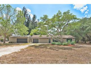 11920 Shirley Ln, North Fort Myers, FL 33917 (MLS #217028857) :: RE/MAX DREAM