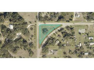 21731 N River Rd, Alva, FL 33920 (#217028897) :: Homes and Land Brokers, Inc