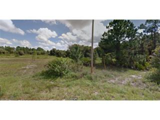 1229 Eburn St E, Lehigh Acres, FL 33974 (MLS #217029367) :: RE/MAX DREAM