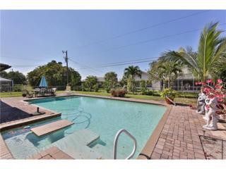 1439 SE 22nd St, Cape Coral, FL 33990 (MLS #217029470) :: RE/MAX DREAM