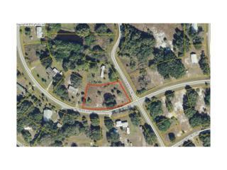 1174 Horseshoe Loop, Moore Haven, FL 33471 (MLS #217029824) :: The New Home Spot, Inc.