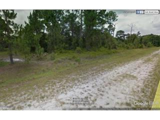 235 N Sendero St, Clewiston, FL 33440 (#217033365) :: Homes and Land Brokers, Inc