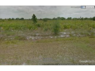 135 N Zambria St, Clewiston, FL 33440 (#217033379) :: Homes and Land Brokers, Inc