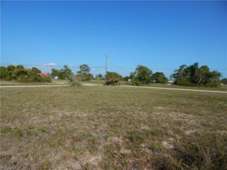 336 SW 11th Pl, Cape Coral, FL 33991 (MLS #217036278) :: RE/MAX DREAM