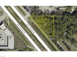 14250 N Cleveland Ave, North Fort Myers, FL 33903 (MLS #214055610) :: The New Home Spot, Inc.