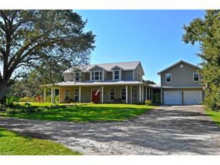 4034 Oak Haven Dr, Labelle, FL 33935 (#216022768) :: Homes and Land Brokers, Inc