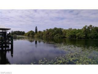18051 Riverchase Ct, Alva, FL 33920 (MLS #216027328) :: The New Home Spot, Inc.