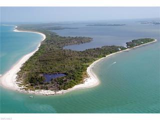 11420 Pejuan Shores, Other, FL 33924 (MLS #216033235) :: The New Home Spot, Inc.