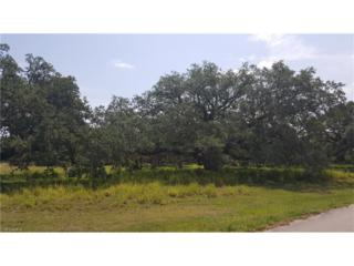 4010 Oak Haven Dr, Labelle, FL 33935 (MLS #216033851) :: The New Home Spot, Inc.