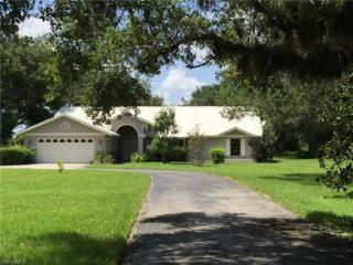 1232 Riverbend Dr, Labelle, FL 33935 (MLS #216034616) :: The New Home Spot, Inc.