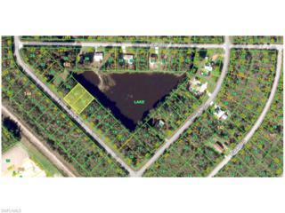 12088 Estrella Blvd, Punta Gorda, FL 33955 (MLS #216037286) :: The New Home Spot, Inc.