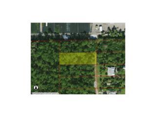 Della Dr., Naples, FL 34117 (#216045083) :: Homes and Land Brokers, Inc