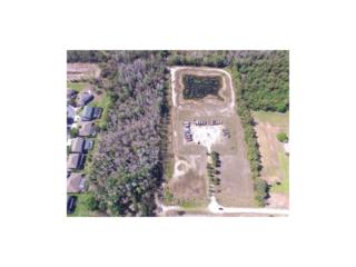 12400 Musket Ln, Fort Myers, FL 33912 (MLS #216046184) :: The New Home Spot, Inc.