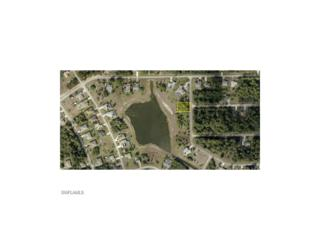 846 Haskell St E, Lehigh Acres, FL 33974 (MLS #216057187) :: The New Home Spot, Inc.