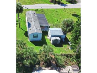 1123 Dolphin Ln, Moore Haven, FL 33471 (MLS #216060909) :: The New Home Spot, Inc.