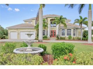 12590 Apopka Ct, North Fort Myers, FL 33903 (MLS #216061910) :: The New Home Spot, Inc.