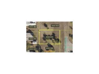 7633 Morgan Jones Dr, North Fort Myers, FL 33917 (MLS #216068473) :: The New Home Spot, Inc.