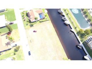 2022 Ottersrest Ln, Cape Coral, FL 33990 (MLS #216071074) :: The New Home Spot, Inc.