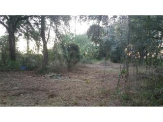 00 Loblolly Bay Rd, Labelle, FL 33935 (MLS #216075040) :: The New Home Spot, Inc.