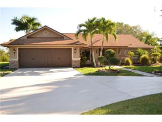 7243 Lake Dr, Fort Myers, FL 33908 (MLS #217001379) :: The New Home Spot, Inc.