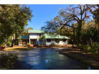14181 River Rd, Fort Myers, FL 33905 (MLS #217003096) :: The New Home Spot, Inc.