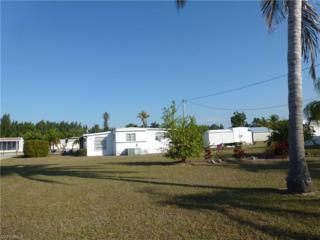 5100 Flamingo Dr, St. James City, FL 33956 (MLS #217004513) :: The New Home Spot, Inc.