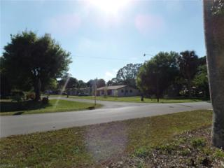 308 Colorado Pl, Fort Myers, FL 33905 (MLS #217004863) :: The New Home Spot, Inc.