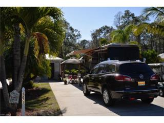 5875 Brightwood Dr, Fort Myers, FL 33905 (MLS #217005438) :: The New Home Spot, Inc.