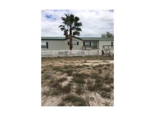 4505 Pioneer 16th St, Clewiston, FL 33440 (MLS #217005556) :: The New Home Spot, Inc.