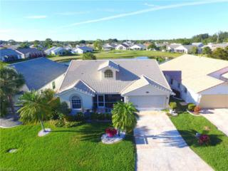 17781 Dragonia Dr, North Fort Myers, FL 33917 (MLS #217008134) :: The New Home Spot, Inc.