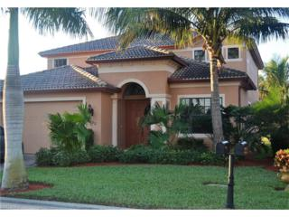 9182 River Otter Dr, Fort Myers, FL 33912 (MLS #217008538) :: The New Home Spot, Inc.