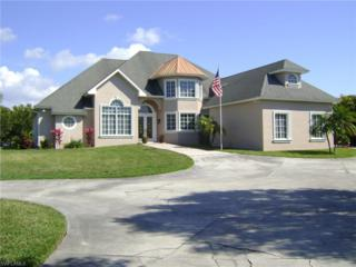 16425 Rainbow Meadows Ct, Fort Myers, FL 33908 (MLS #217010743) :: The New Home Spot, Inc.