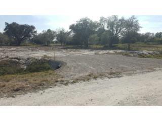 555 N Brida St, Clewiston, FL 33440 (MLS #217011529) :: The New Home Spot, Inc.