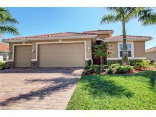 3120 Scarlet Oak Pl, North Fort Myers, FL 33903 (MLS #217014032) :: The New Home Spot, Inc.