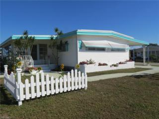 406 Timber Ln N, North Fort Myers, FL 33917 (MLS #217015305) :: The New Home Spot, Inc.