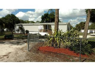 2254 Nankervis Ln, North Fort Myers, FL 33917 (MLS #217015971) :: The New Home Spot, Inc.