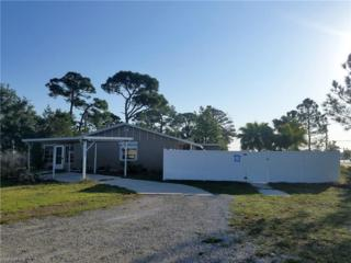7232 Tulane Dr, Fort Myers, FL 33908 (MLS #217017496) :: RE/MAX DREAM