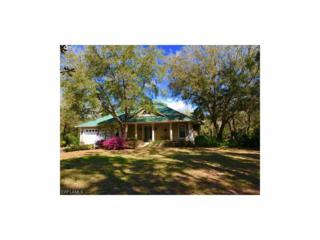 17701 Frank Rd, Alva, FL 33920 (MLS #217017890) :: The New Home Spot, Inc.