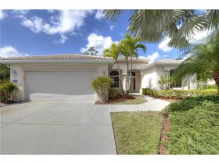 20733 Mystic Way, North Fort Myers, FL 33917 (MLS #217017937) :: The New Home Spot, Inc.