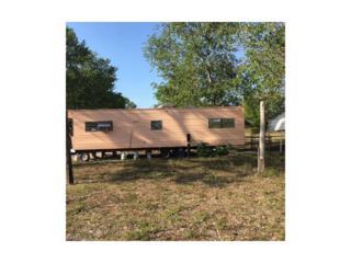 2603 E 23rd St, Alva, FL 33920 (MLS #217020235) :: The New Home Spot, Inc.