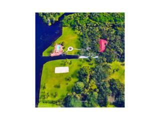 18925 S River Rd, Alva, FL 33920 (MLS #217020522) :: The New Home Spot, Inc.