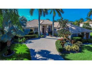 11401 Longwater Chase Ct, Fort Myers, FL 33908 (MLS #217020641) :: The New Home Spot, Inc.