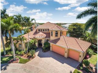 1506 Hermitage Ln, Cape Coral, FL 33914 (MLS #217021060) :: The New Home Spot, Inc.