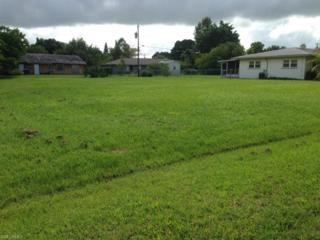 2226 Iris Way, Fort Myers, FL 33905 (MLS #214045583) :: The New Home Spot, Inc.