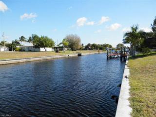 2005 Ottersrest Ln, Cape Coral, FL 33990 (MLS #215009859) :: The New Home Spot, Inc.